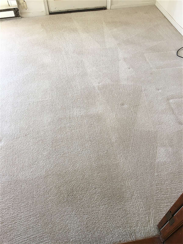 Remove unkown spots from carpets cleanin in Riva, MD
