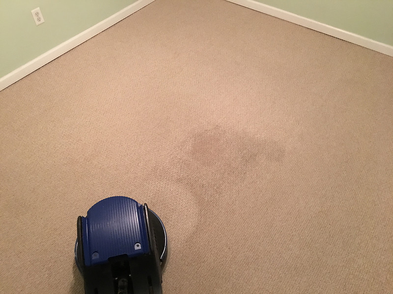 Scrubbing carpets cleaning for Sanitize 4 Serenity