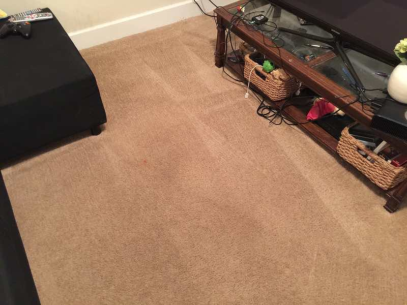 unknown spots on carpets after for sanitize 4 serenity